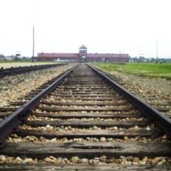 Birkenau - Krakow guide