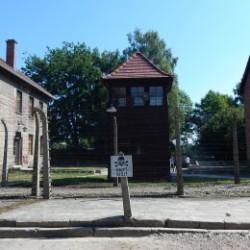 Auschwitz Tours - Death Blok