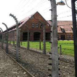 Auschwitz Tours - Everyday life