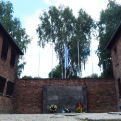 Reconstruction of the Death Wall - Oswiecim Sighseeing