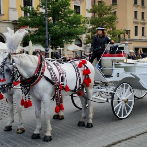 Holiday in Krakow