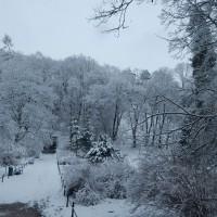 ojcowski-park-narodowy-zwidzanie (6)
