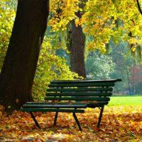 jesien - park jordana w krakowie